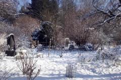 Garten-im-Winter